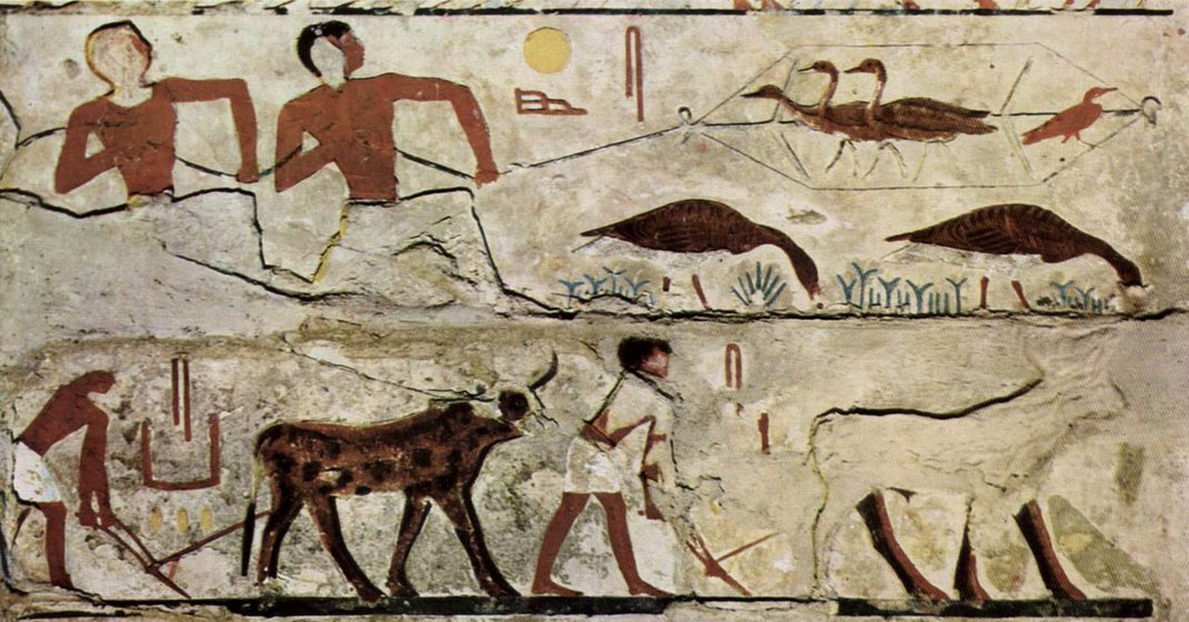Tomb Painting Known as Egypt's 'Mona Lisa' May Depict Extinct Goose Species