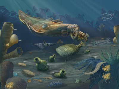 The Cambrian Period was a time of remarkable diversification of life when many of the animal groups that exist today first appear in the fossil record.