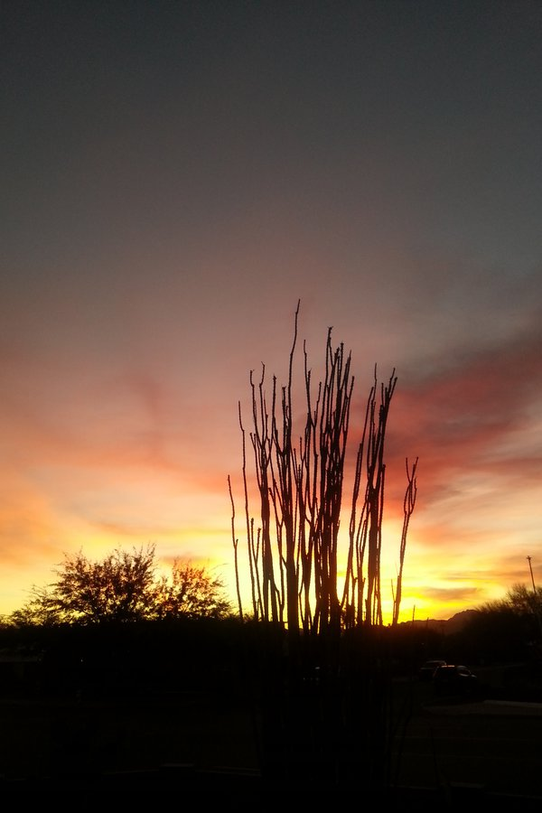 sunset in tucson thumbnail