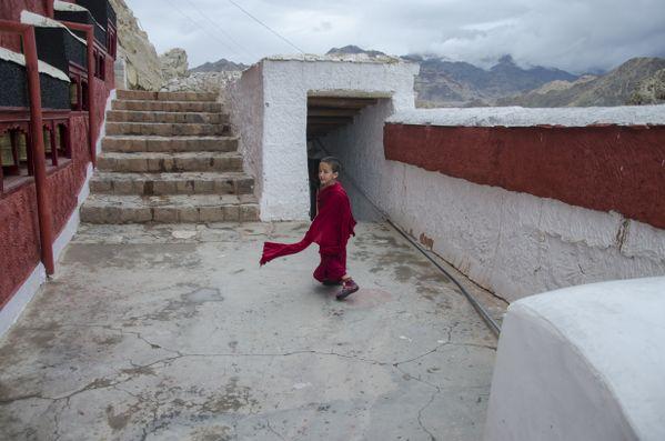 A young monk thumbnail
