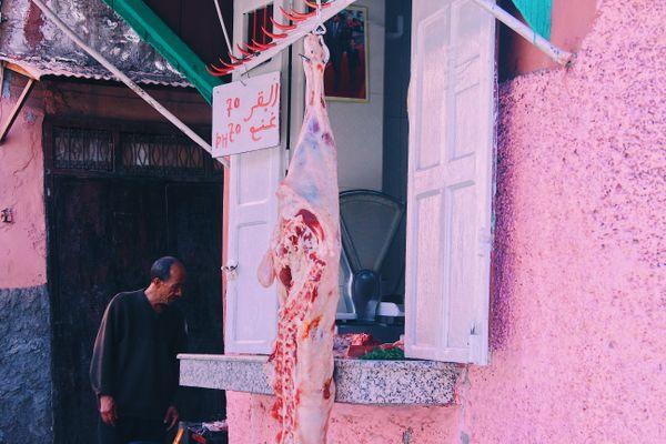 Meat in Marrakesh thumbnail
