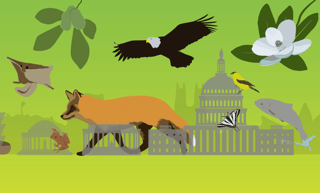 Green graphic of various animals next to the Capitol Building.