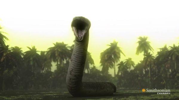 Preview thumbnail for Titanoboa vs T-Rex