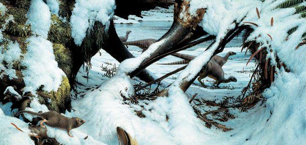 Dinosaur winter