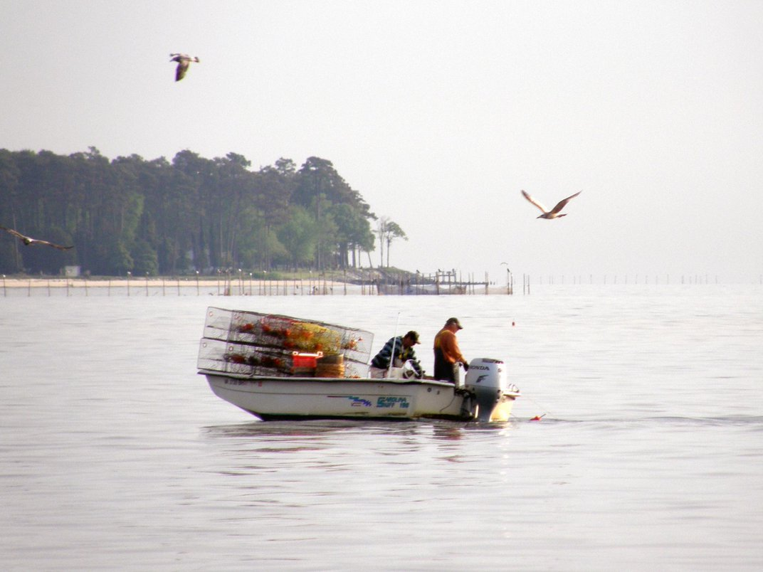 Checking In on the Health and Vigor of the Chesapeake Bay