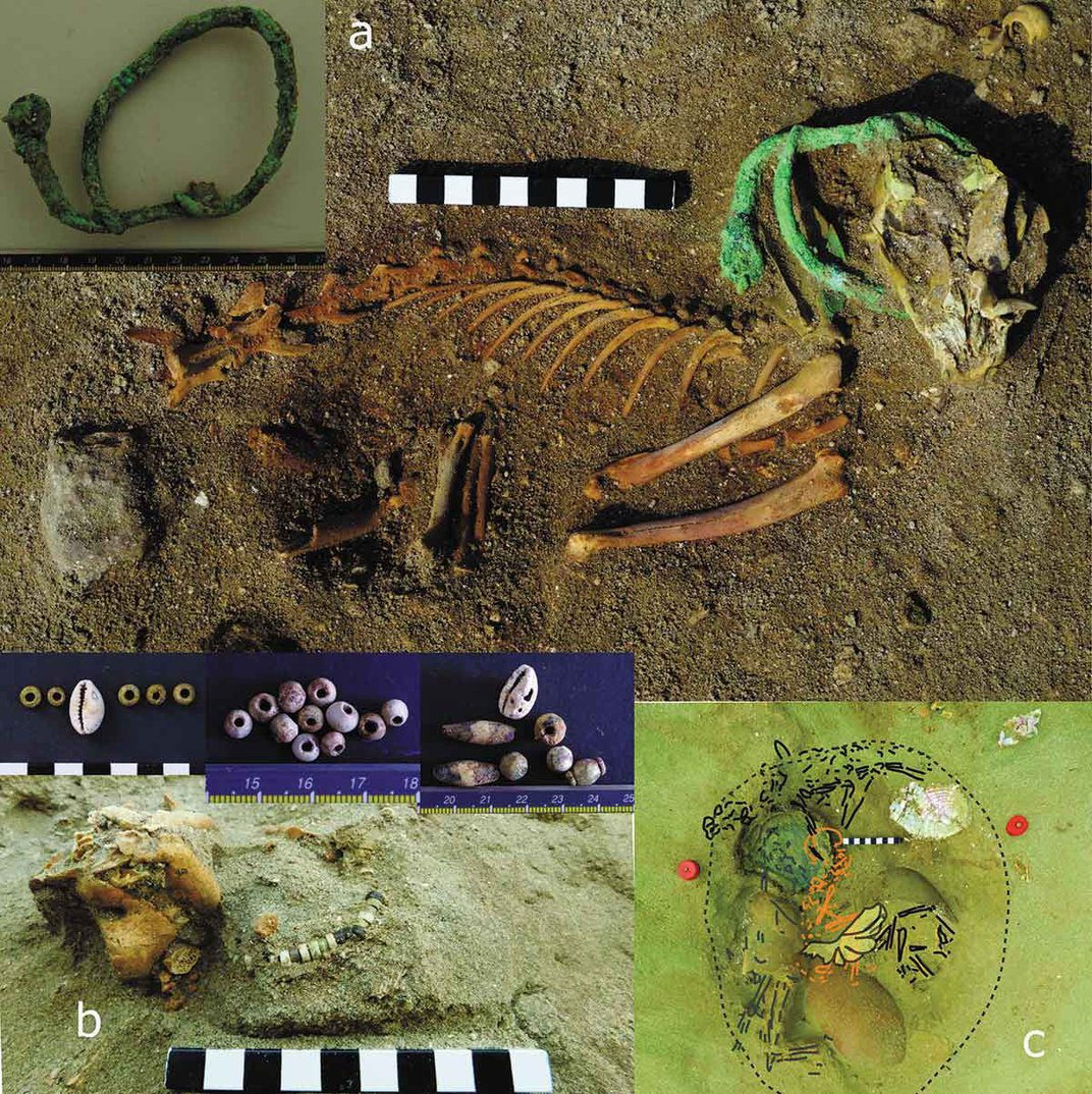 Is This 2,000-Year-Old Egyptian Burial Site the World's Oldest Pet Cemetery?