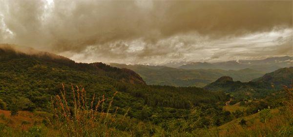 Climbing mount Sri Lanka thumbnail