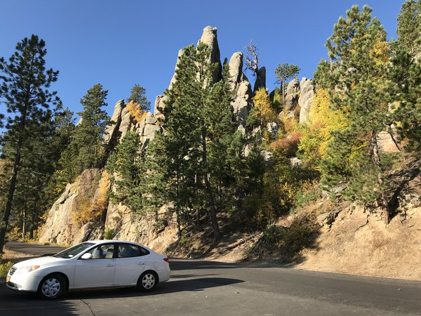Needles in Custer State Park in Fall thumbnail