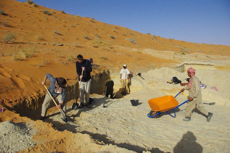 Arabia Excavation