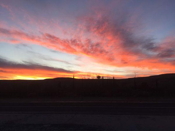 Sunset Delight thumbnail