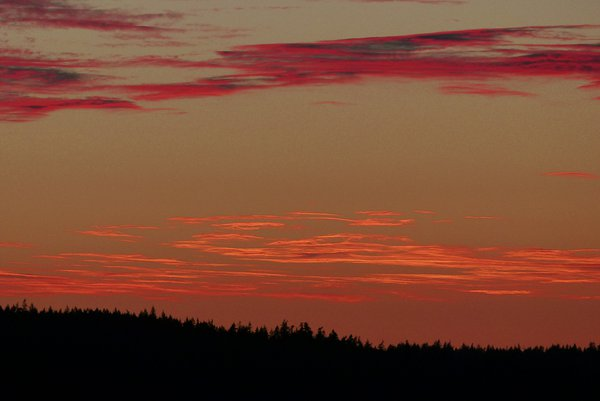 Magnificent red sunset over Whidbey island. thumbnail
