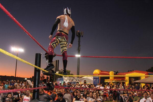 Triumphant Lucha Libre Wrestler thumbnail