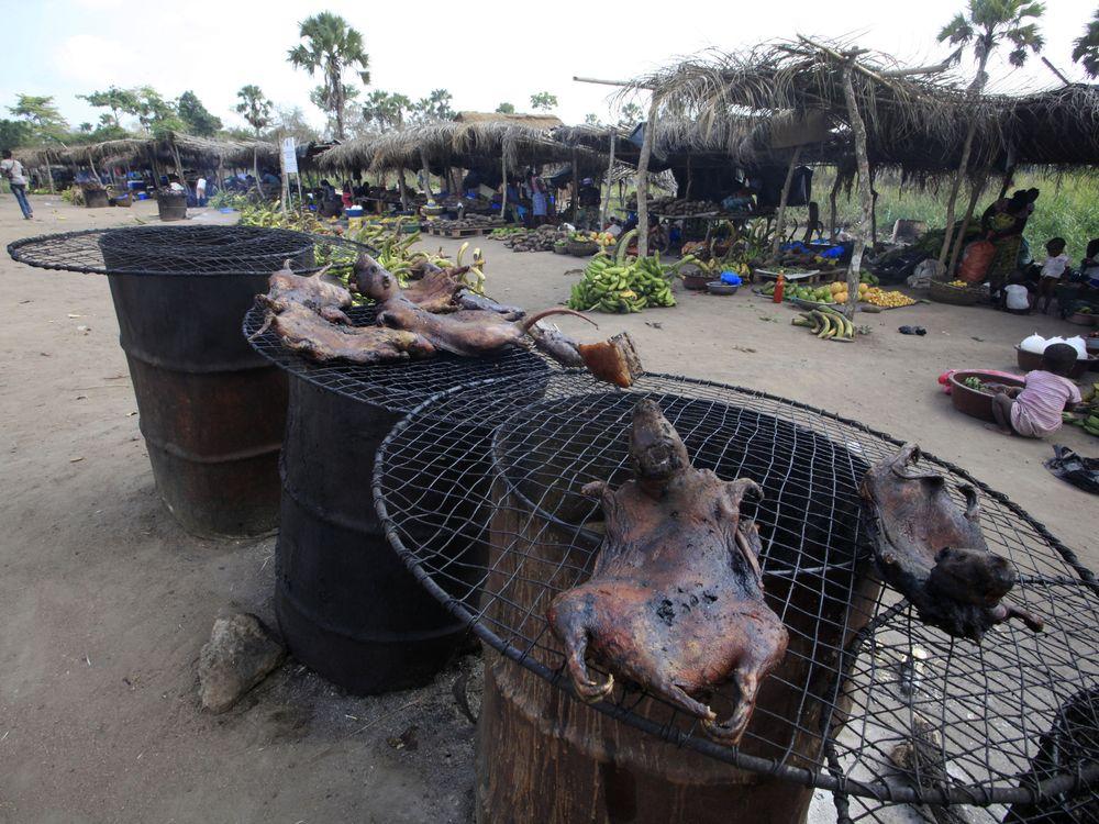 07_09_2014_ebola bushmeat.jpg