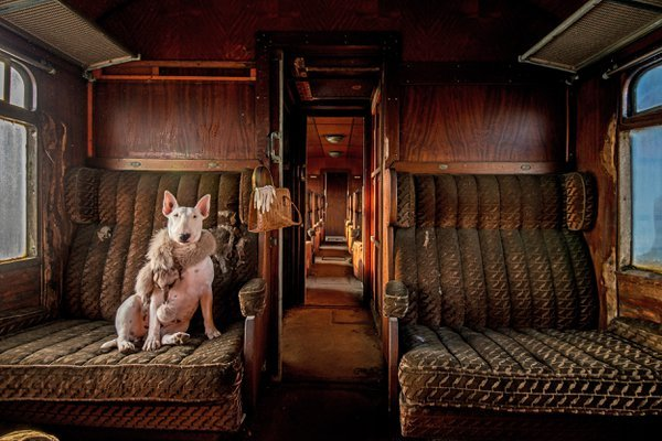 Orient Express thumbnail
