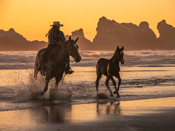 Horses in the Surf thumbnail