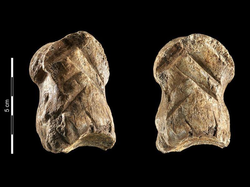 deer bone carving