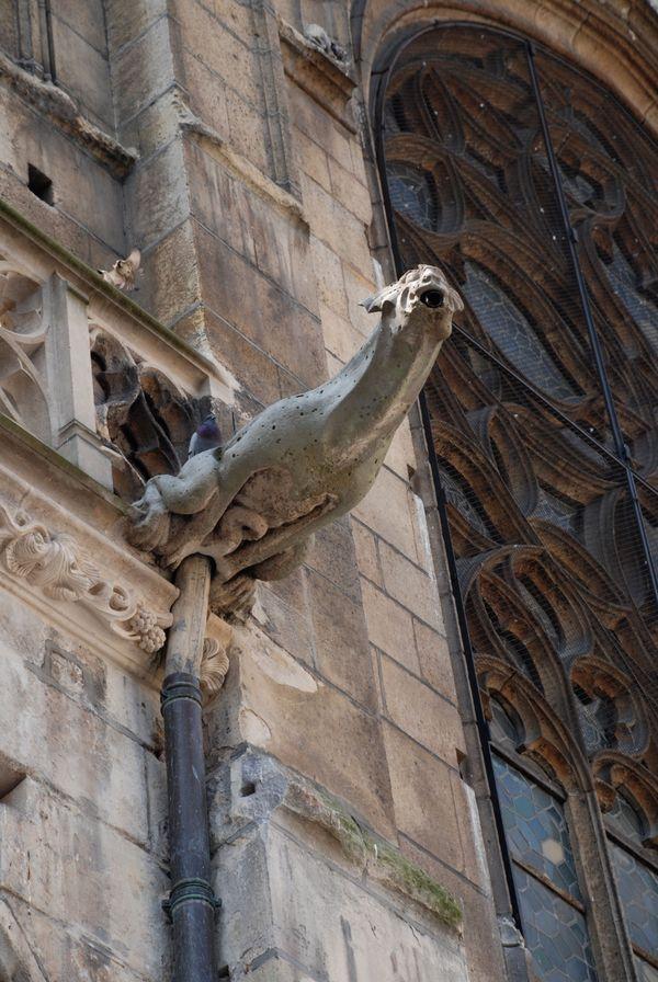 Gargoyle Paris Cathedral thumbnail