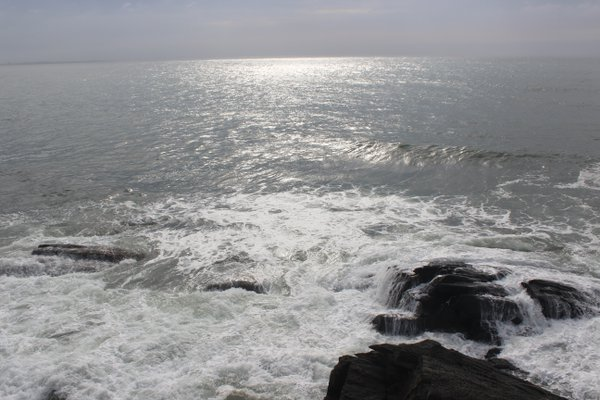 Looking down at the Rhode Island shoreline from The Cliff Walk, in Newport. thumbnail