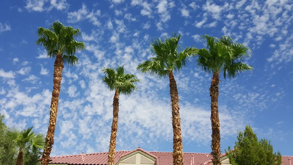 Sky ripples thumbnail
