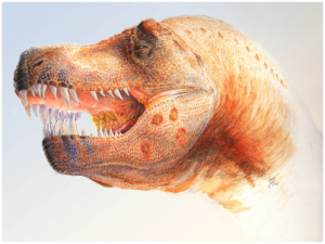 20110520083150tyrannosaurus-lesions-300x225.jpg
