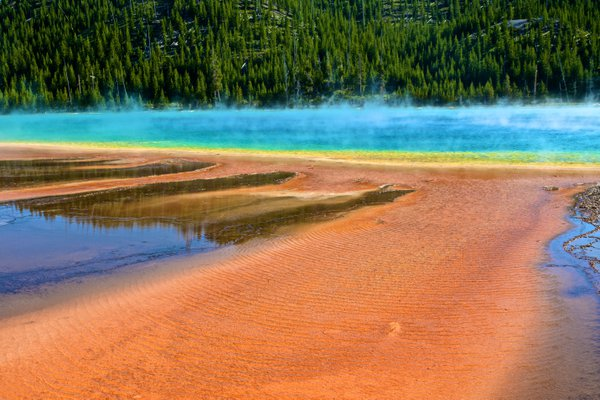 Yellowstone Striking Coloration thumbnail