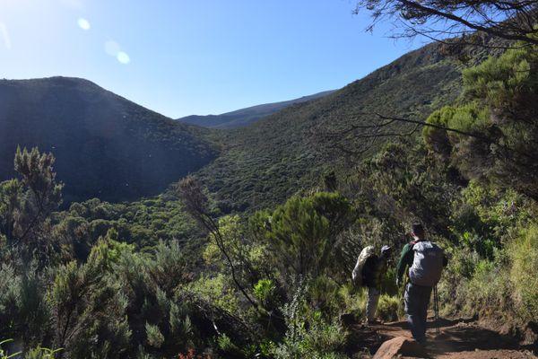 Kilimanjaro Trek thumbnail