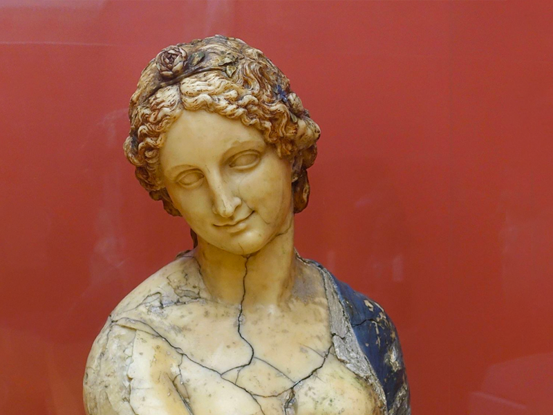 Flora bust in front of red background