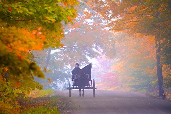 Autumn in Vermont thumbnail