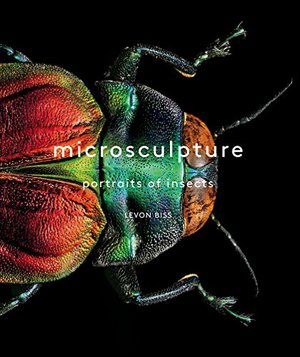 Preview thumbnail for 'Microsculpture: Portraits of Insects