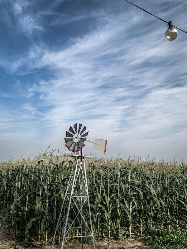 An air fan between fields of corn thumbnail