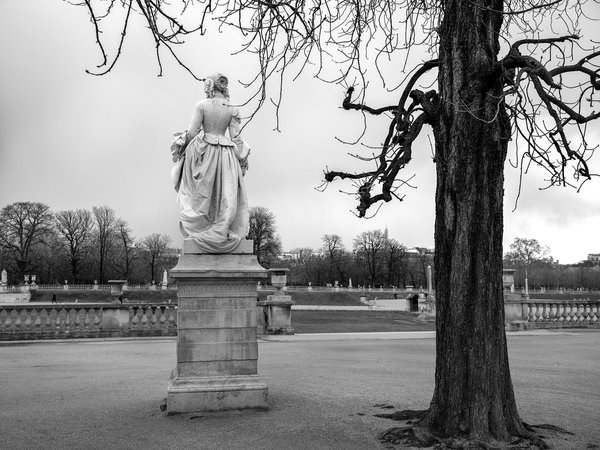 Winter in The Jardin du Luxembourg thumbnail