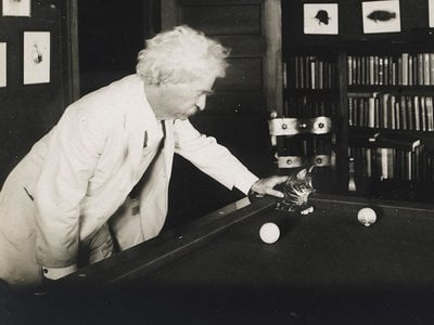 Mark Twain's love of cats pervaded his literature as well as his writing habits.