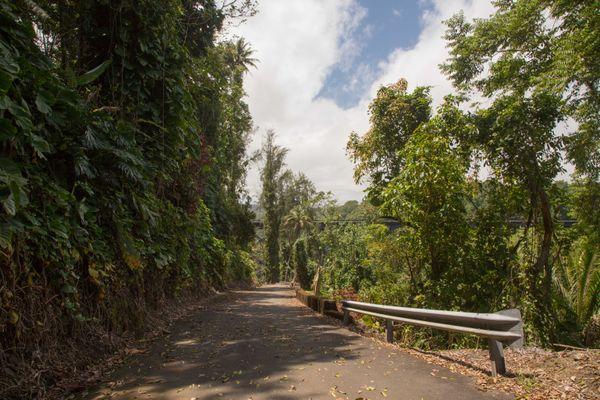 Homakua Coast, Hawaii #1 thumbnail