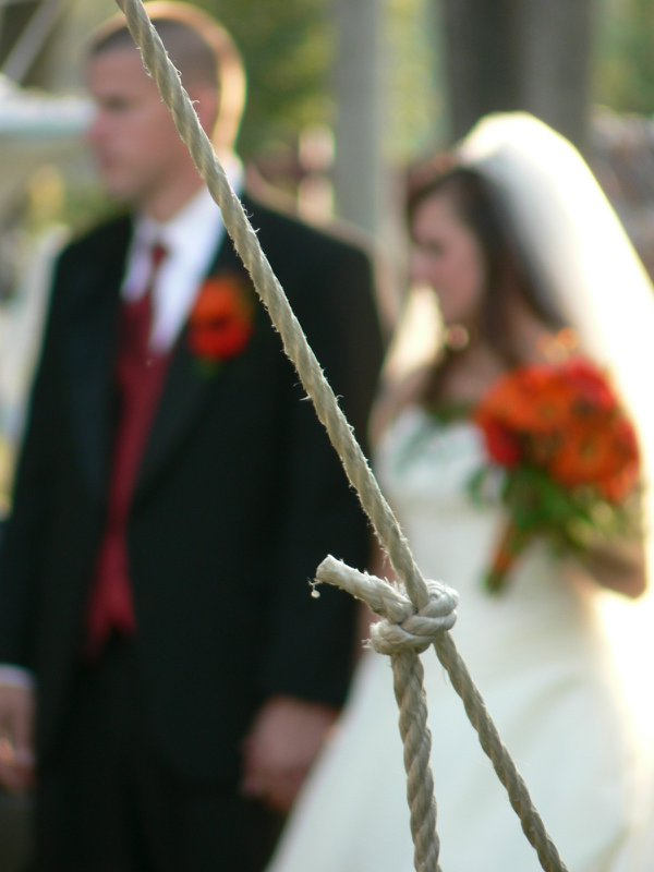 Tied the Knot thumbnail