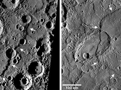 Two prominent lobate thrust fault scarps on Mercury, Discovery Rupes and Beagles Rupes, imaged by Mercury Dual Imaging System (MDIS) on the MESSENGER spacecraft. Discovery Rupes (left), named for the ship HMS Discovery, shown here in a MDIS high-incidence angle image mosaic, was first imaged by Mariner 10 in the mid-1970's. Beagle Rupes (right), a bow-shaped fault scarp, was initial imaged during MESSENGER's first flyby.