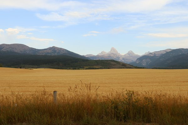 Tetons from the West thumbnail