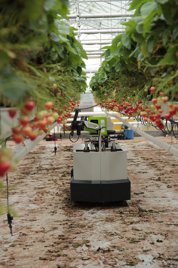 Five Roles Robots Will Play in the Future of Farming