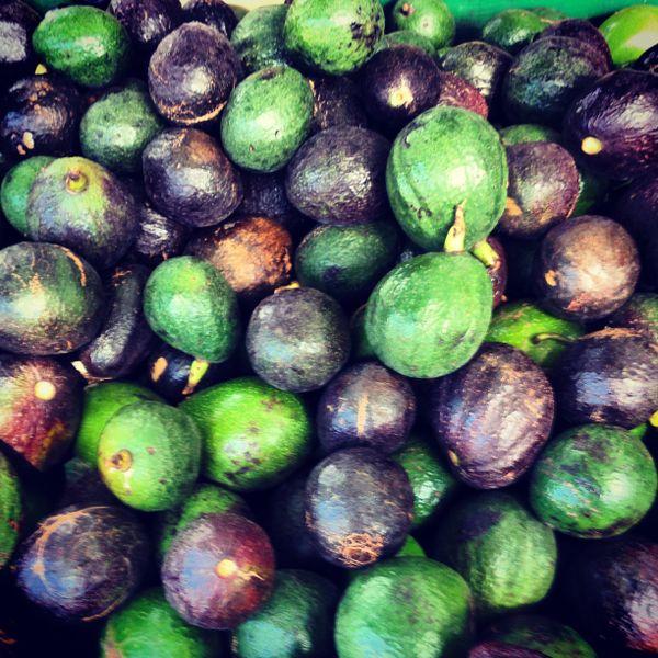 Avocados thumbnail