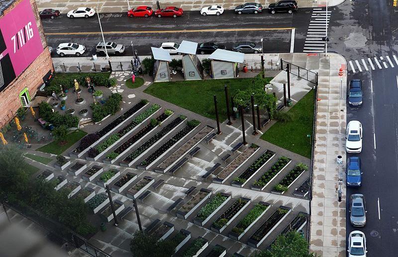 Lafayette Greens.jpg