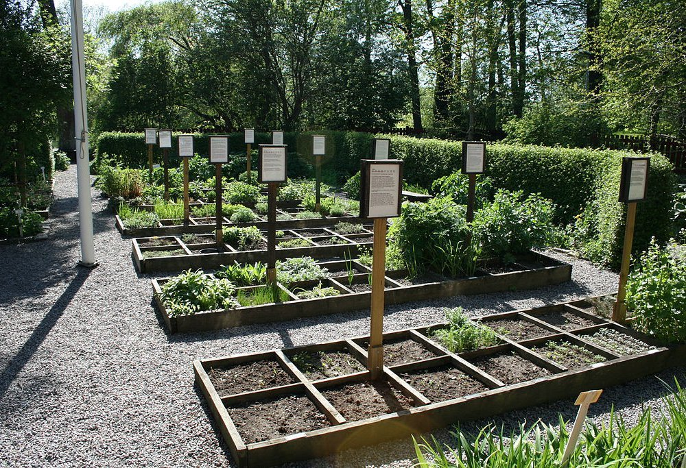 Amazon may be coming to a garden near you.