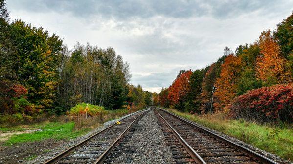 Fall colors & train tracks thumbnail