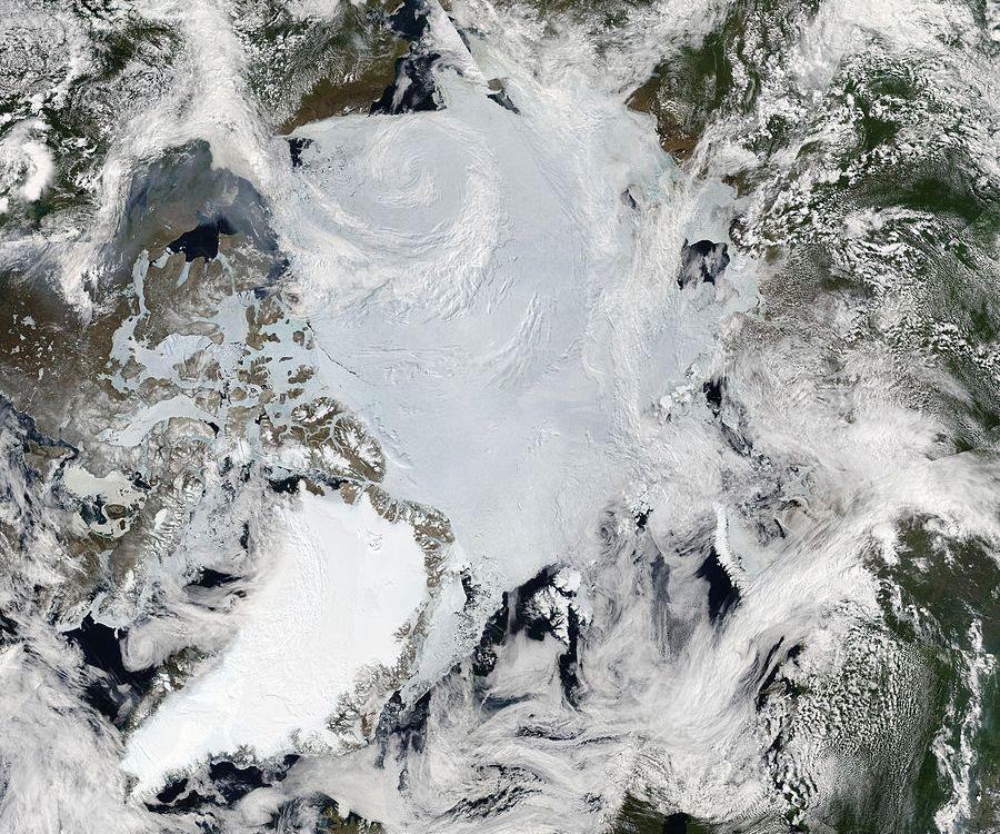 MODIS image of the Arctic