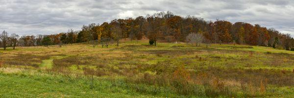 Panoramic View at National Arboretum, Washington, D.C. thumbnail