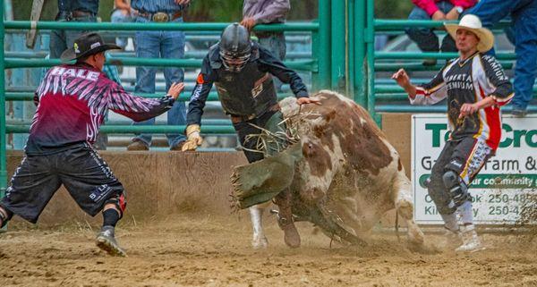 Bull Riding 13 thumbnail