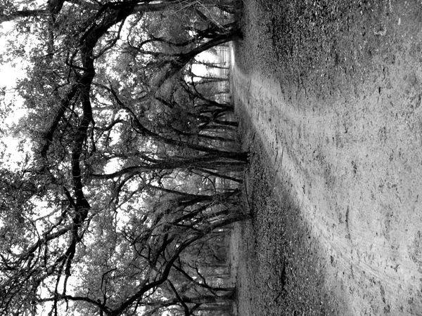 A gravel road. thumbnail