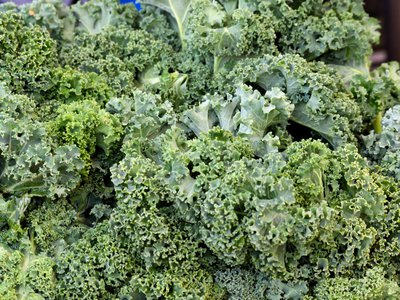 If you stick to a diet of kale, brussels sprouts and similarly leafy greens, your salivary proteins will eventually adapt to their bitter taste