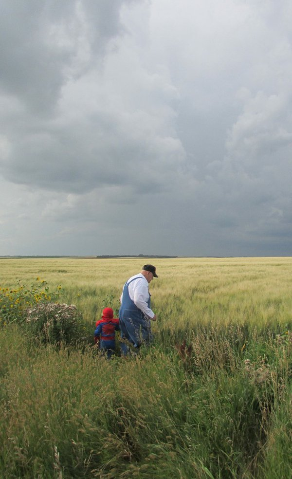 The farmer, the field, the age and youth thumbnail
