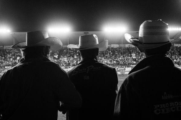 Cowboy  thumbnail