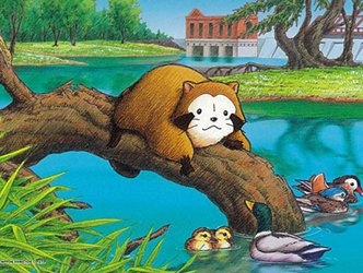 The Children's Book That Caused Japan's Raccoon Problem