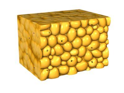 Fat cells.